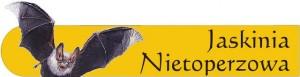 Logo Batcave, logo jaskinia Nietoperzowa