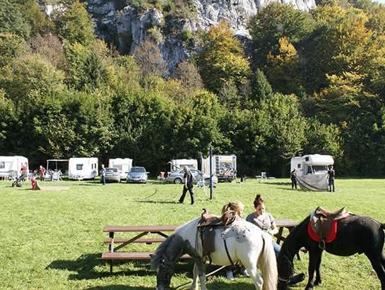 Visiting ponys, Camping Pod Sokolica, Campsite Dolina Bedkowska in Jura
