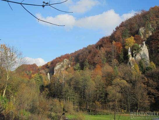 Autumn in the Bedkowska Valley, campsite Brandysowka
