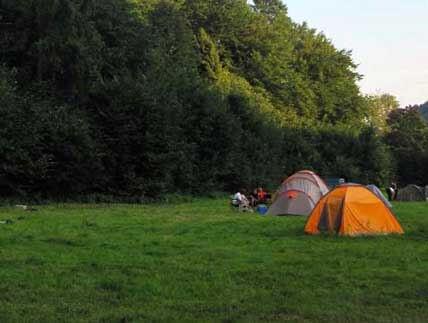 Camping Krakow. Pole campingowe pod Krakowem. Pomysł na weekendowy spacer.