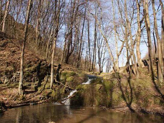 Naturalny wodospad na Jurze. Wycieczka szkolna w Dolinki Podkrakowskie.